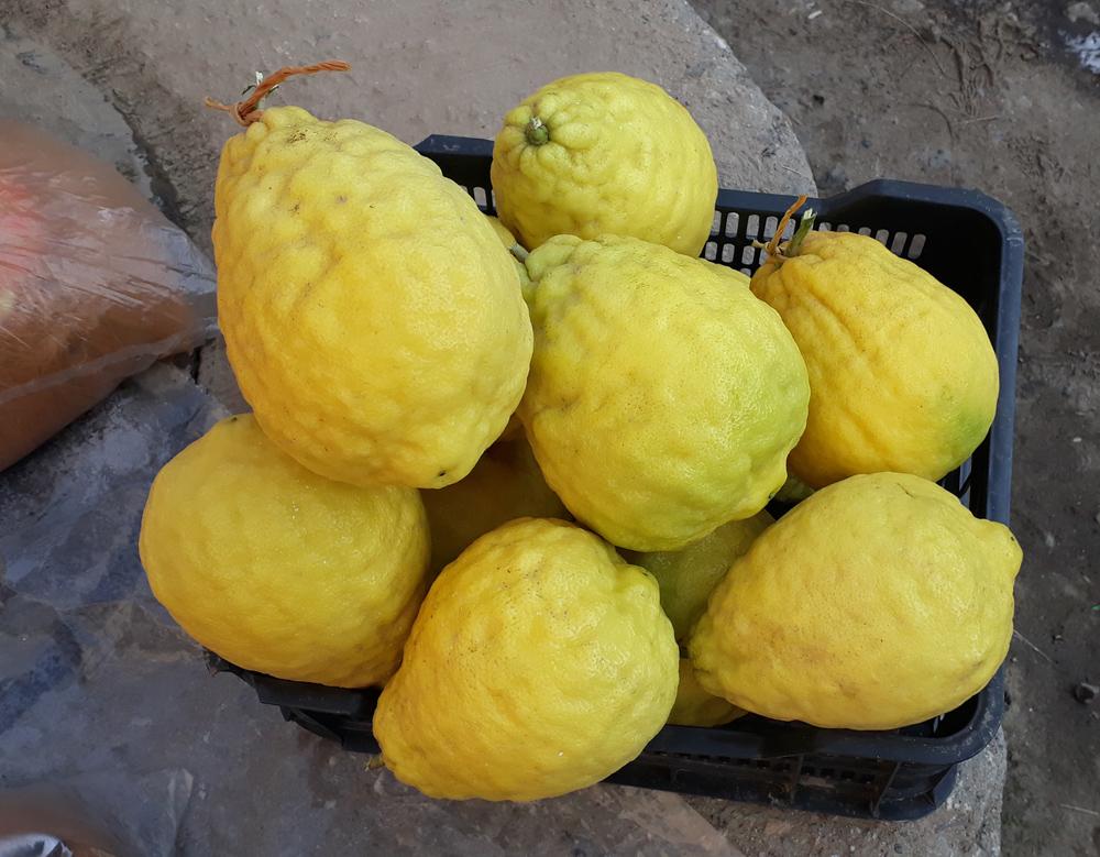 лимони апндероза
