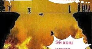 puli_sirot
