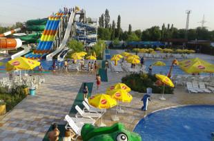 Делфин аквапарк